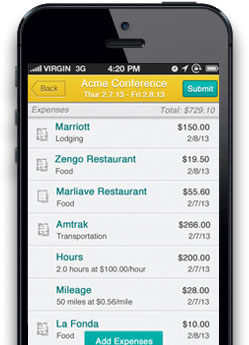 Falcon Expenses iphone app screen 3
